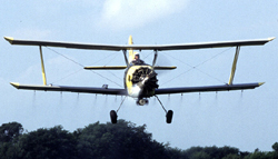 Aerial spraying to eradicate gypsy moths